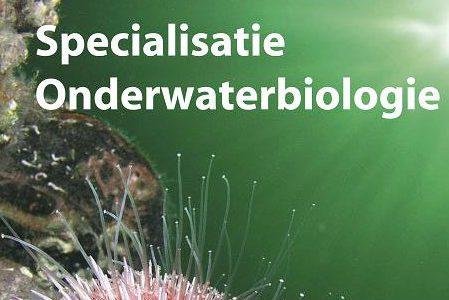 Specialisatie Onderwater Biologie tijdens binnenweekend Bruinisse