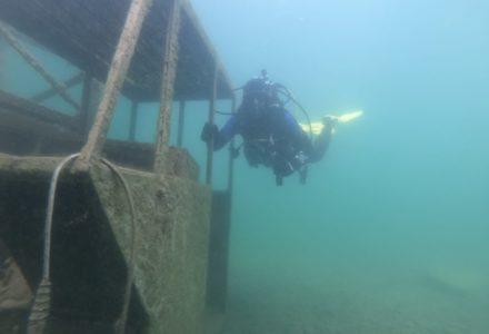 Prachtige duiken tijdens BeNeDuLux-weekend 2019